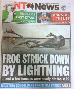 NT_News_frog_lightning